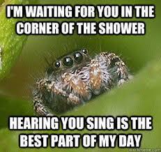 Shower Spider Meme - misunderstood spider memes quickmeme