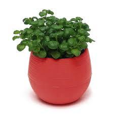 popular plastic pots for plants wholesale buy cheap plastic pots