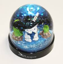 orca water globe the whale museum