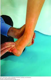 improving muscle performance dutton u0027s orthopaedic examination