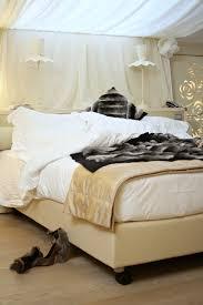 Real Fur Blankets Sleeping In Chinchilla Blanket Fur