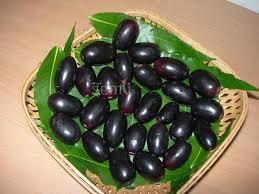 buy fruit online buy jamun purple online fresh fruits vegetables order online in