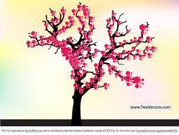 free cherry blossom tree vector