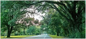 j c penney memorial scenic highway
