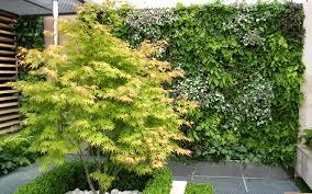 incredible green wall garden the green wall educational vertical
