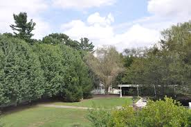 Botanical Gardens In Nc by Our Retreat Center Heartwood Refuge Hendersonville Nc