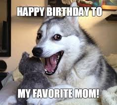 Birthday Dog Meme - 61 funniest happy birthday mom meme