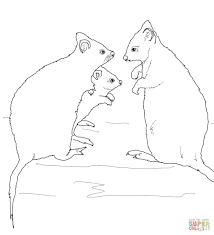 quokka family coloring page free printable coloring pages