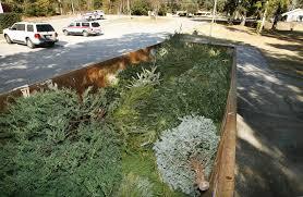 baldwin county u0027s christmas tree recycling program starts thursday