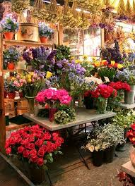 flower places 98 best shop s and storefronts images on shops places