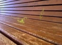 ringhiera in legno per giardino legno per giardino casette da giardino caratteristiche