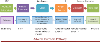 environmental health perspectives u2013 application of adverse outcome