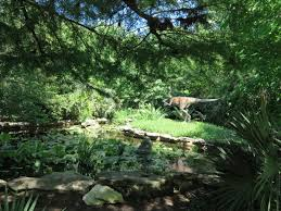 South Texas Botanical Gardens by 10 Beautiful Gardens Of Austin Texas