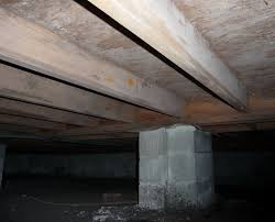 attic mold and crawl space mold tips and tricks for preventing it