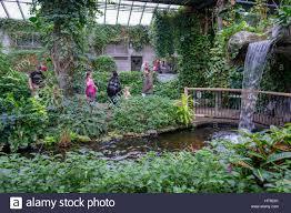 Inside Garden by View Indoor Garden Tropical Stock Photos U0026 View Indoor Garden