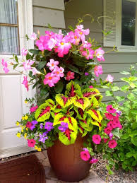 Summer Flowers by 99 Simple Summer Container Garden Flowers And Formula 53