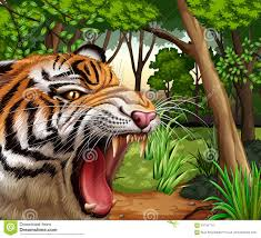 tiger roaring in the jungle stock vector illustration of creature