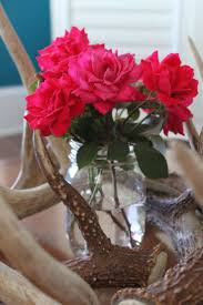 20 best country household ideas images on pinterest deer antlers
