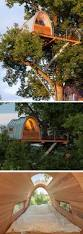 a modern treehouse built around an oak tree house remodeling