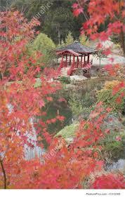 Japanese Style Pergola by Japanese Garden Image