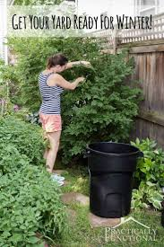 368 best images about gardening plants to see if i can kill on