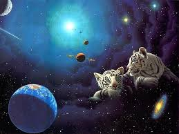 cat universe wallpaper cat tigers moon dark night two full space watchers wallpaper image