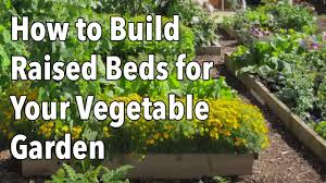how to build raised beds for your vegetable garden youtube