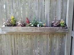 10 best fence planting images on pinterest fence planters
