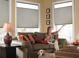 cordless top down bottom up cellular shades blindsshopper com