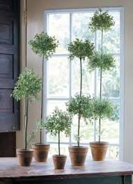 Mantel Topiaries - decorating with house plants trestle tables angel and gardens