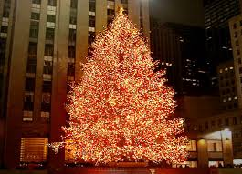 when is the christmas tree lighting in nyc 2017 nyc rockefeller center christmas tree goes green inhabitat