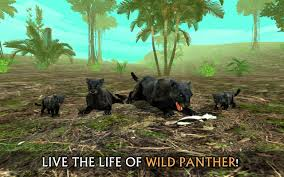 amazon com wild panther sim 3d appstore for android