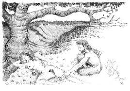 pen and pencil sketches jeffrey wiener gallery