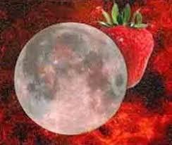full strawberry moon june strawberry moon dreamwalker