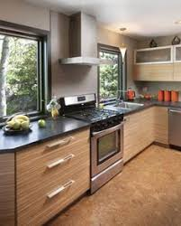Zebra Wood Kitchen Cabinets Zebrawood Doors That Can Be Mounted In Ikea Cabinet Boxes House