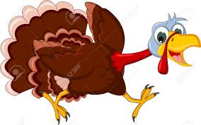 thanksgiving pic funny thanksgiving turkey running images u0026 stock pictures royalty free
