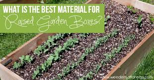 What Material Should I Use For My Patio Durango Colorado by The Best Material For Raised Garden Boxes Weed U0027em U0026 Reap