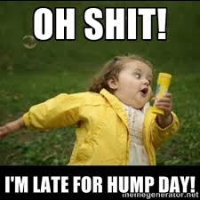 Dirty Hump Day Memes - most funny hump day meme