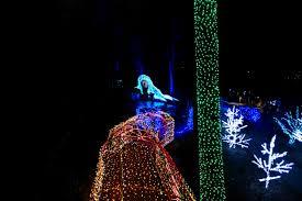 Botanical Garden Atlanta Lights A New Year At The Atlanta Botanical Garden U2013 L Is For Lucy