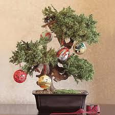chinoiserie chic the easy peasy chinoiserie chic tree
