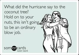 Funny Blow Job Meme - what did the hurricane say to the coconut tree hold on to your nuts
