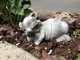 389 best pigs oink oink images on pigs pig pig