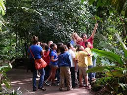Botanical Gardens Volunteer by Volunteer Information Days At Fairchild Fairchild Tropical