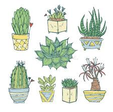 cute succulents hand drawn illustration set of cute cactus and succulents stock