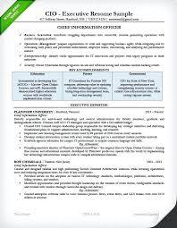 executive resume pdf sle cio resume sle executive resume for a cio resume sle