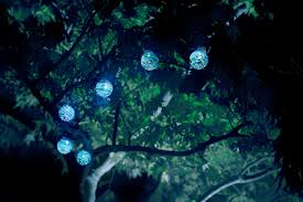 solar globe lights garden wow how cool is this a string of solar light balls hang
