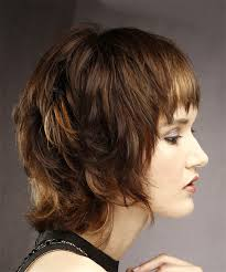 back viewof short shag hairdstyles shag hairstyles and haircuts in 2018