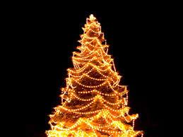 christmas tree with lights christmas christmas tree with lights on wallchristmas sale