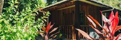 m u0026a eco beach bungalows the true palauan paradise