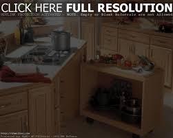 universal design kitchen cabinets maxbremer decoration